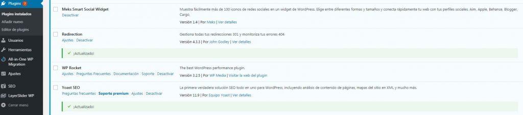 Wp Rocket instalado en WordPress