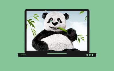 TinyPNG: ¿Cómo comprimir imágenes para mejorar la velocidad de tu página web?